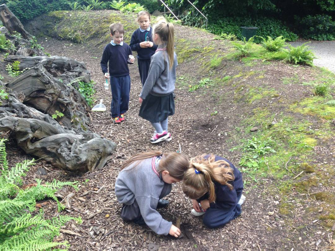 Photograph of children from St Enda's Primary School, Whitefriar St, Dublin 8, visiting the Gardens in June 2014, used with permission.